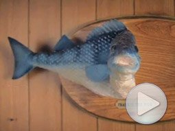 McDonald's: Singing Fish
