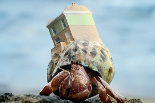 hermit crabs discuss moving house in this fun campaign for zoopla