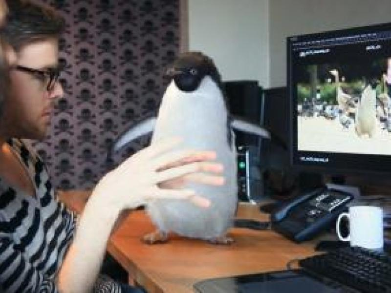 Just How Did They Make That John Lewis Penguin so Realistic? | AdAge